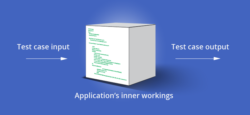 Performing white box pen testing by providing test inputs and assessing outputs