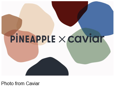 Pineapple x caviar in front of colored misshaped circles