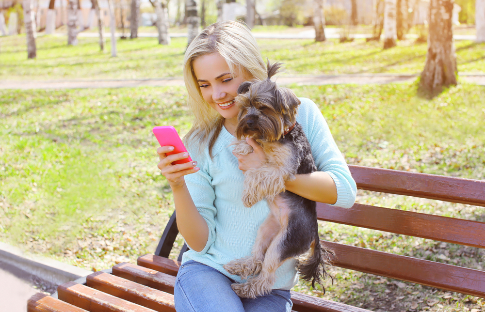 Shutterstock_290494508  Young smiling girl owner holding phone with yorkshire terrier dog sitting in park