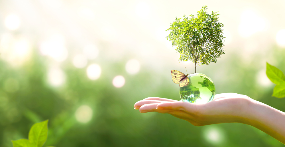 Shutterstock_1500154991 Earth crystal glass globe ball and growing tree in human hand, flying yellow butterfly on green sunny background. Saving environment, save clean planet, ecology concept. Card for World Earth Day.