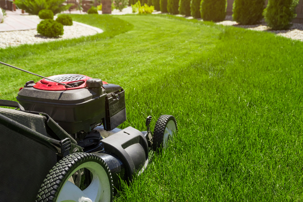 Shutterstock_613453019 Lawn mower on green grass
