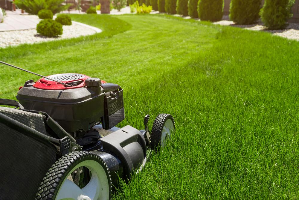 Shutterstock_613453019 Lawn mower on green grass
