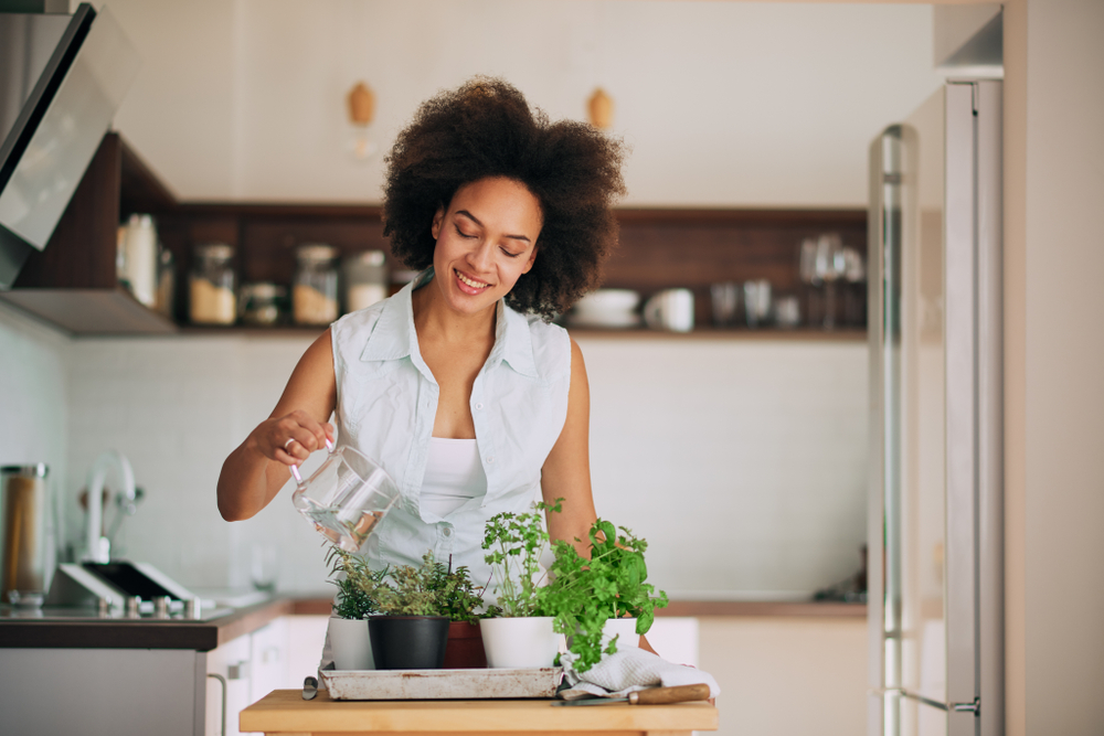 Shutterstock_1080831776 Beautiful mixed race woman gardening fresh herbs at her kitchen.