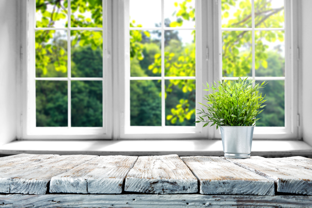 Shutterstock_1010479432 Desk of free space with green plant and window of spring time