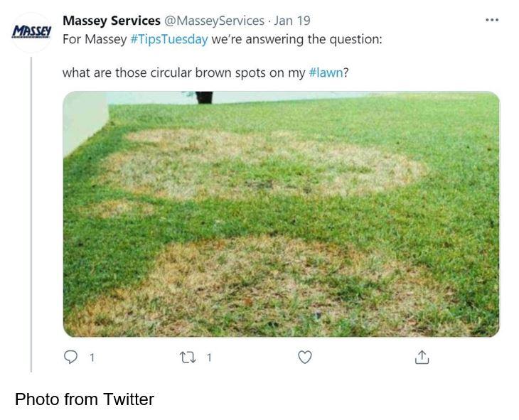 Massey Services twitter