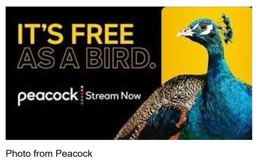 peacock streaming
