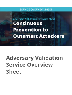 Adversary Validation Service Overview Sheet