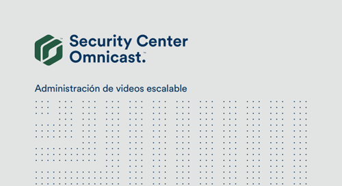 Videovigilancia Omnicast