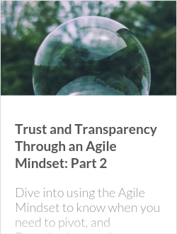 Trust and Transparency Through an Agile Mindset: Part 2