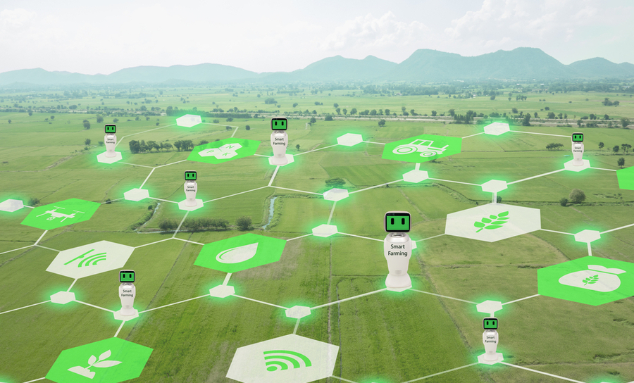 IoT architecture spread across fields for agriculture