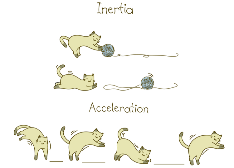 Cats demonstrating laws of motion.