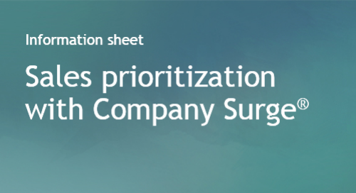 Company Surge® use case - Sales Prioritization