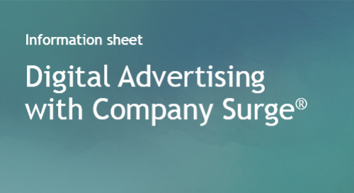 Company Surge® use case - Digital Advertising