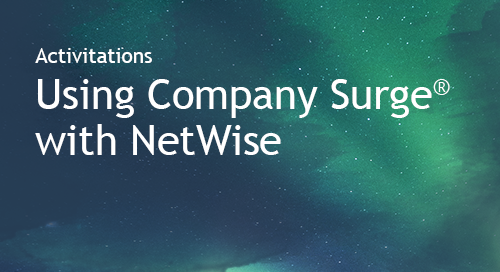 NetWise - Partner Information Sheet
