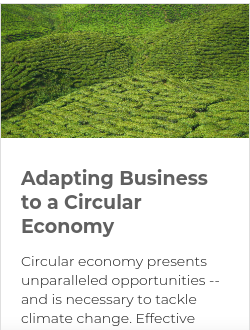 Adapting Business to a Circular Economy