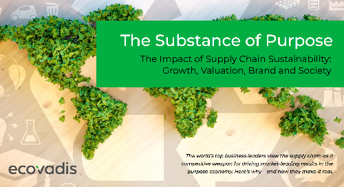 The Impact of Supply Chain Sustainability: Growth, Valuation, Brand and Society