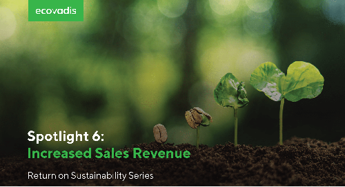 Spotlight 6: Increased Sales Revenue