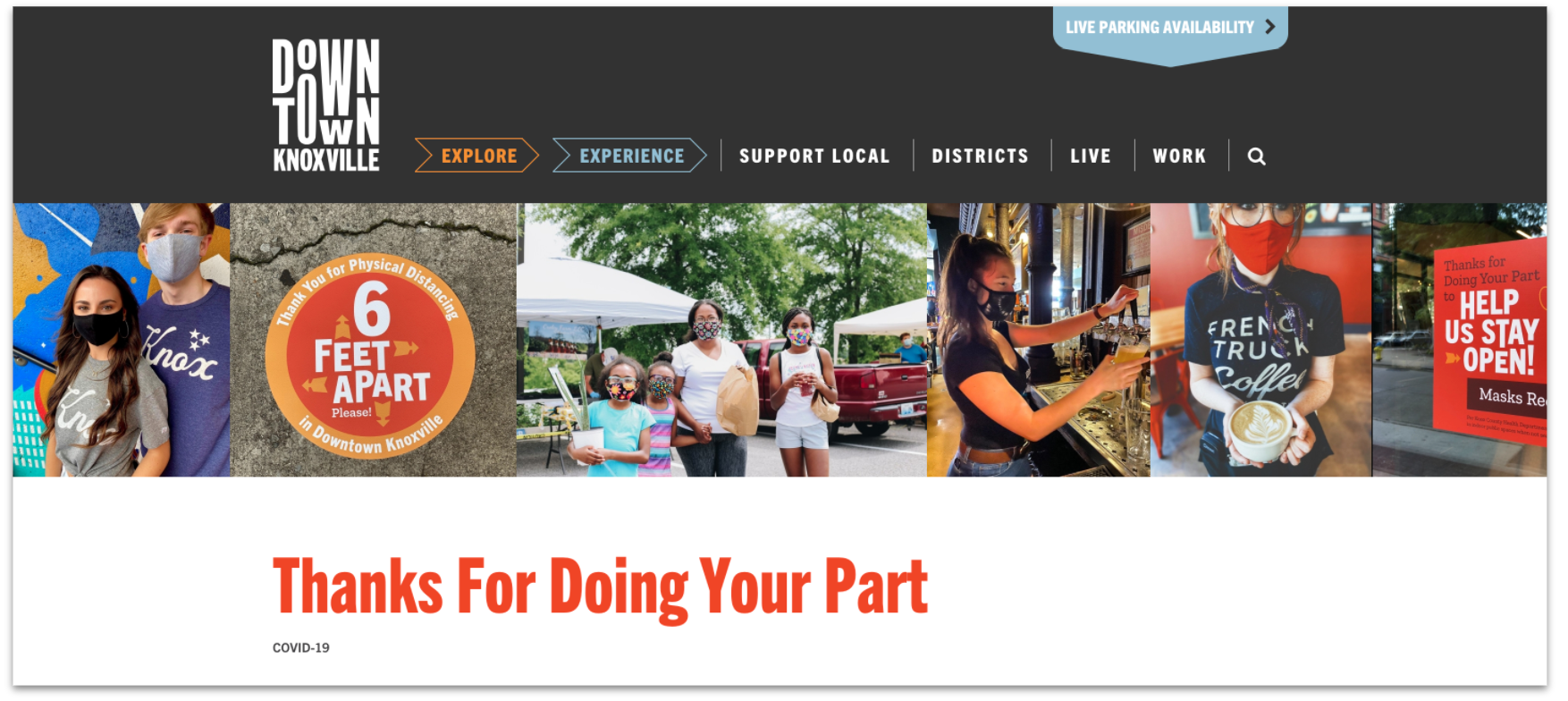 Downtown Knoxville Alliance website reminding people to support local