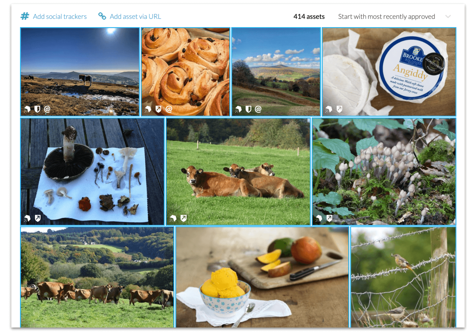 Visit Monmouthshire's rights approved user-generated content photo wall in CrowdRiff