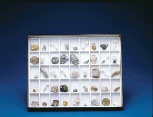 Fossil collection for students that represents a wide range of fossiliferous horizons