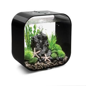Aquarium for science classroom