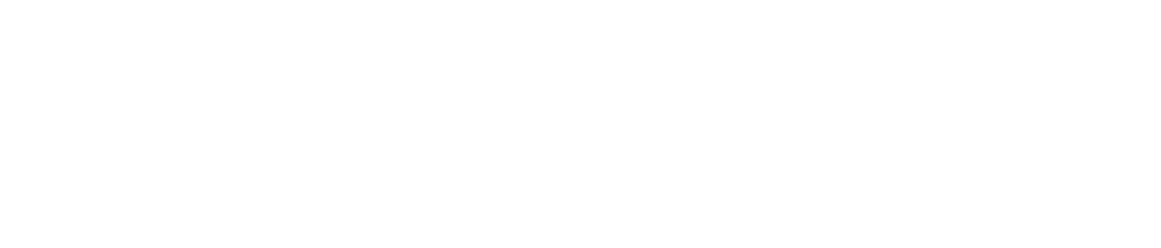 Altium CN logo