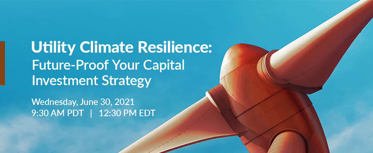 Webinar: Utility Climate Resilience: Future-Proof Your Capital Investment Strategy