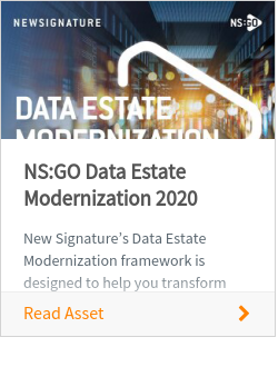 NS:GO Data Estate Modernization 2020