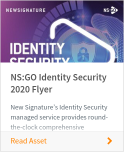 NS:GO Identity Security 2020 Flyer