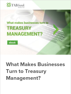 What Makes Businesses Turn to Treasury Management?