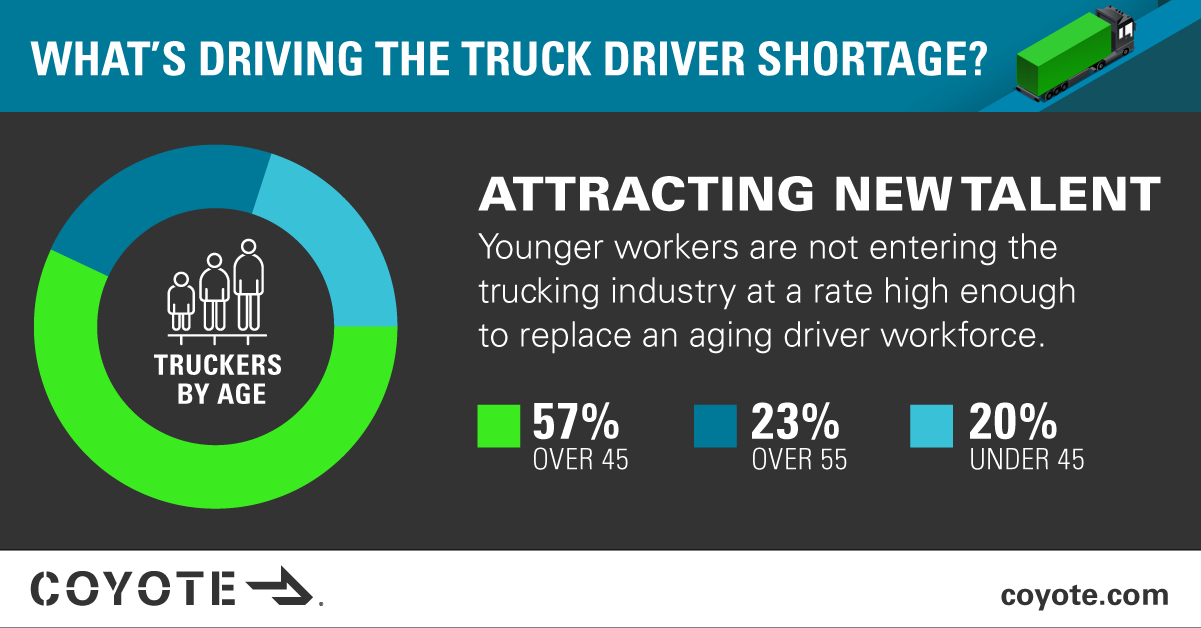 Truck driver labor market demographics graphic