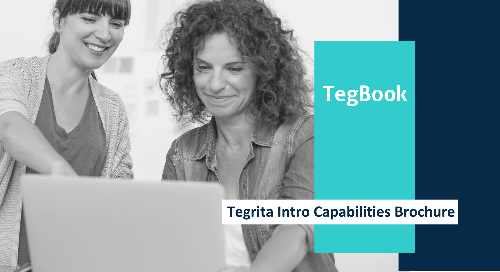 Tegrita Intro Capabilities Brochure