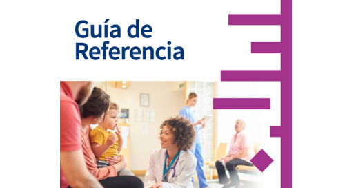 User Guide (Spanish)