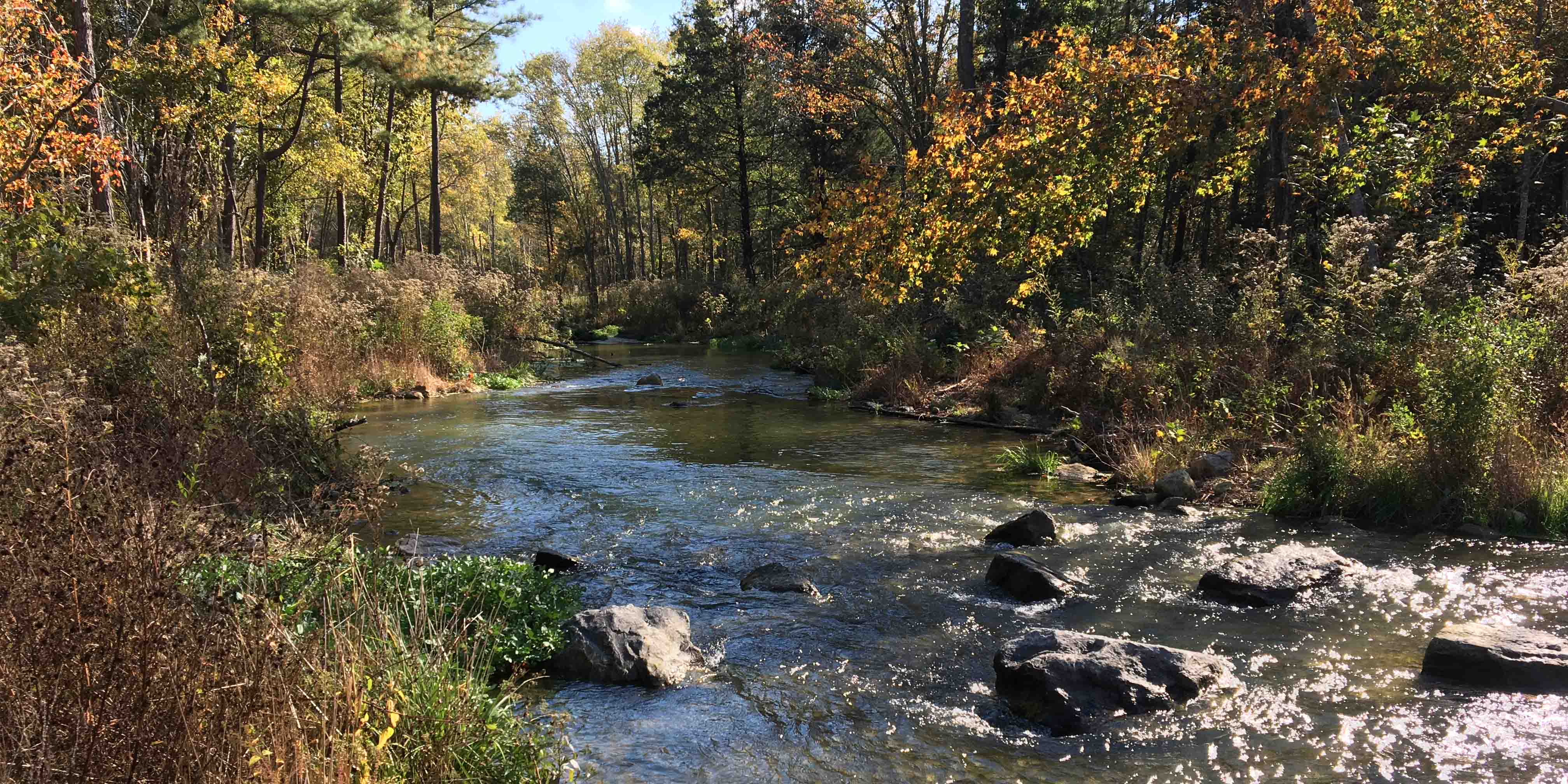 Stream and River Restoration