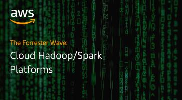 The Forrester Wave: Cloud Hadoop/Spark Platforms