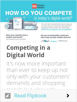 Competing in a Digital World