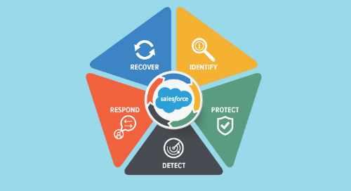 Reduce Risk Through a Holistic Approach to Salesforce Data Governance