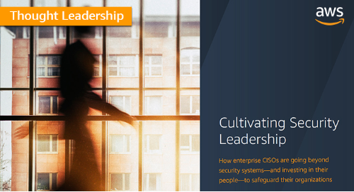Cultivating security leadership: Beyond the systems