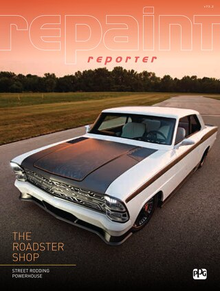 Repaint Reporter (v73 n2)