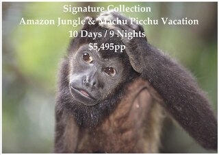 Signature Collection Amazon Jungle & Machu Picchu | 10 Days | $5,495pp