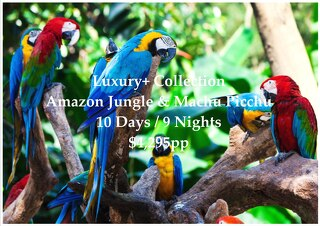 Luxury+ Collection Amazon Jungle & Machu Picchu | 10 Days | $4,295pp