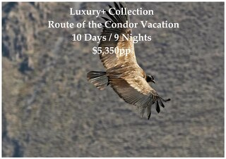 Luxury+ Collection Route of the Condor | 10 Days | $5,350pp