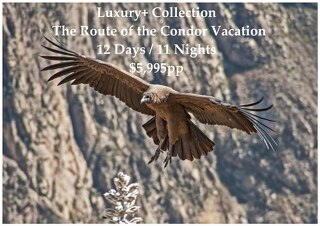 Luxury+ Collection Route of the Condor Vacation | 12 Days | $5,995pp