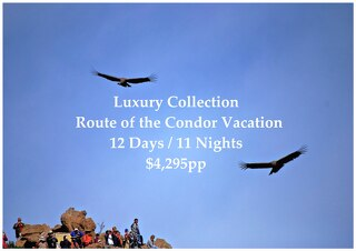 Luxury Collection Route of the Condor Vacation | 12 Days | $4,295pp