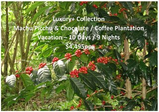 Luxury+ Collection Machu Picchu & Chocolate / Coffee Plantation   10 Days   $4,495pp
