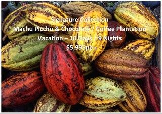 Signature Collection Machu Picchu & Chocolate / Coffee Plantation   10 Days   $5,995pp