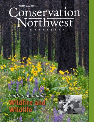 Winter 2015 Conservation Northwest Quarterly