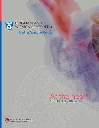 At the Heart of the Future Report 2015