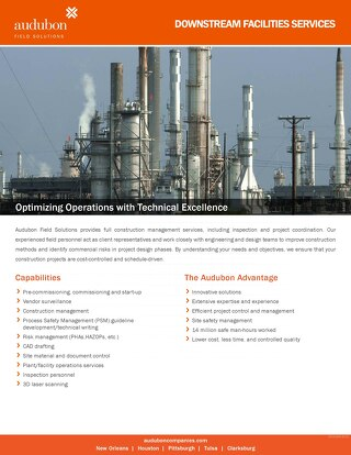 Downstream Facilities Services