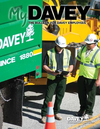 MyDavey Bulletin - May/June 2015